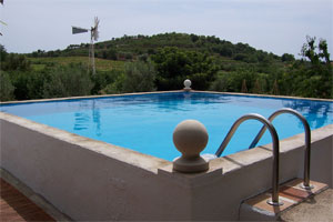 casita molino view of pool and windmill